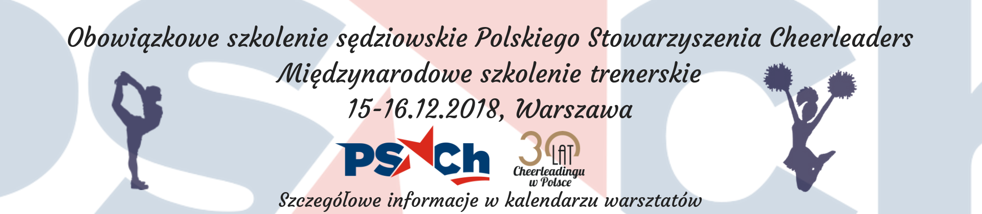 Grand Prix Polski Cheerleaders 2018 (8)