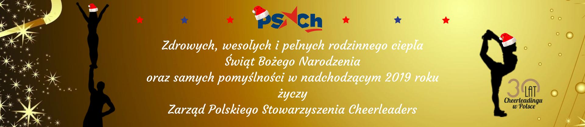 Grand Prix Polski Cheerleaders 2018 (12)